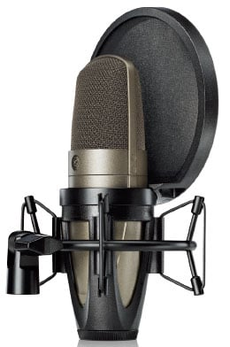 Large Dual-Diaphragm Side-address Condenser Vocal Microphone