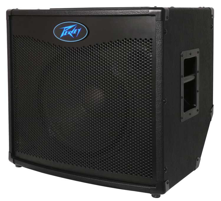 "600W 1x15"" Bass Combo Amplifier"