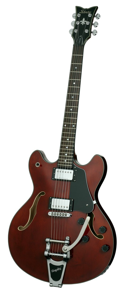 Guitar, Electric Hollow Body w/Bigsby