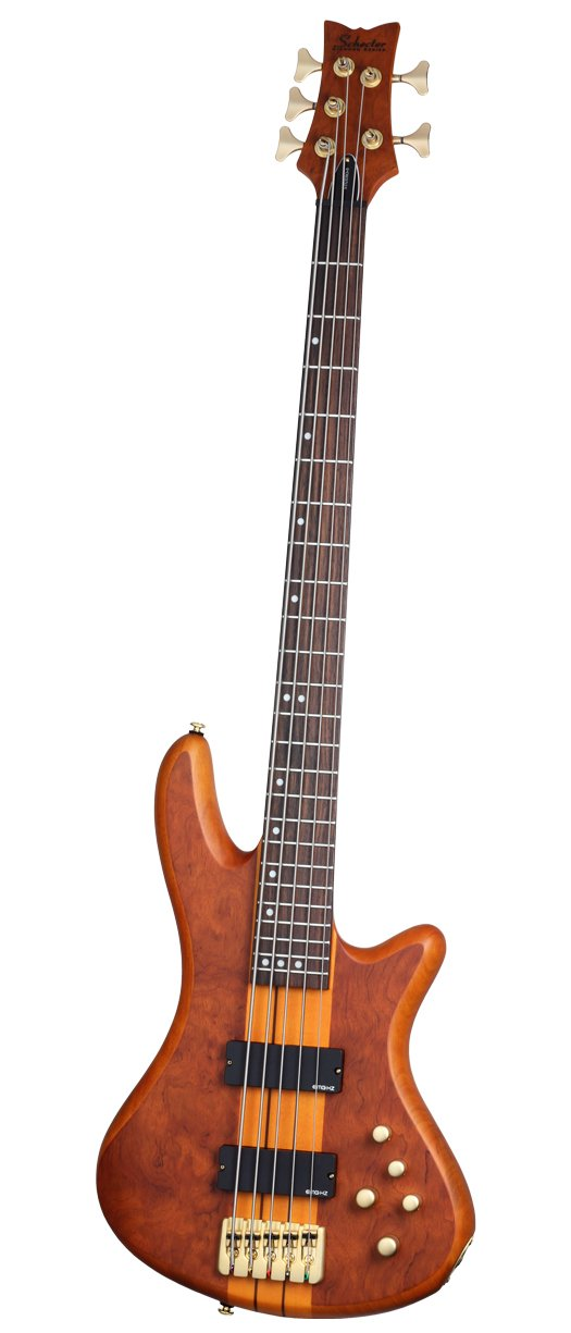 Bass Guitar, 5 string Stiletto Studio