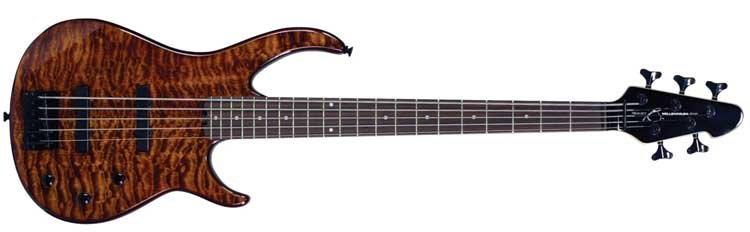 5-String Passive Electric Bass Guitar in Transparent Finishes