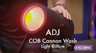 ADJ COB Cannon Wash RGBA LED Cob Wash Effect Fixture Overview