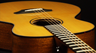 Breedlove Premier Series Acoustic-Electric Guitars Introduction
