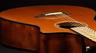 Breedlove Pursuit Series Acoustic-Electric Guitars Introduction