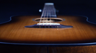 Breedlove Discovery Dreadnought SB Acoustic Guitar Introduction