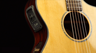 Breedlove Solo Concert Acoustic-Electric Guitar Introduction