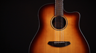 Breedlove Discovery Dreadnought CE SB Acoustic-Electric Guitar Introduction