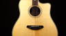 Breedlove Stage Dreadnought Acoustic-Electric Guitar Introduction